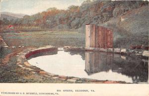 Elliston Virginia Big Spring Waterfront Antique Postcard K61943