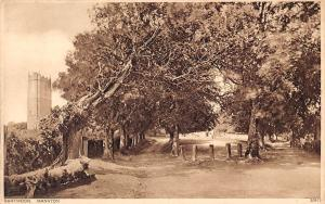 Dartmoor Manaton Promenade