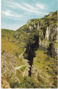 Post Card Somerset CHEDDAR GORGE