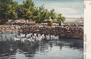 Fran Sveriges Bygder, Skane, Sweden, 1900-1910s