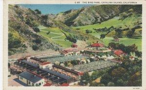 CATALINA ISLAND , Ca , 1935 ; The Bird Park