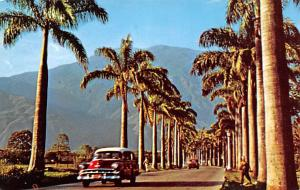 Venezuela Old Vintage Antique Post Card Caracas City Country Club Unused