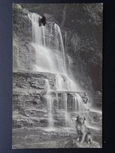 Australia NSW KATOOMBA FALLS & SITTING DOG c1921 RP Postcard