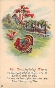 Thanksgiving Old Vintage Antique Postcard Post Card Unused