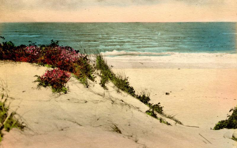 ME - Ogunquit. Sand Dunes