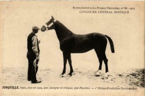 PC CPA JONQUILLE baie bay HORSES SPORT (a14482)