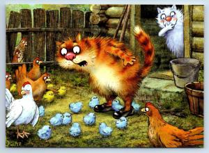 Puzzled CAT in the poultry yard Chickens FUNNY by Zeniuk New Unposted Postcard