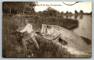 Sample of the Bass We Catch in Fort Wayne Indiana~Exaggerated Freak Fish~1912