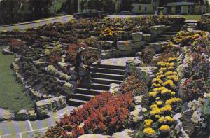 Canada Alma One Of The Rock Gardens