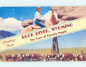 Chrome ANIMALS SCENE Rock River - Near Medicine Bow & Laramie Wyoming WY AH3806