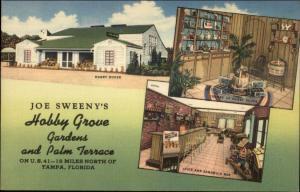 Tampa FL Hobby Grove Gardens Linen Postcard