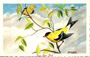 Iowa State Bird Eastern Goldfinch