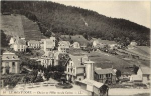 CPA Le MONT-DORE-Chalets et Villas vus du Casino (46519)