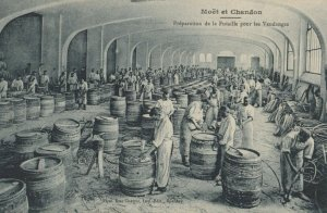 MOET & CHANDON , France, 1900-10s ; Champagne Production #2