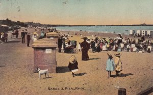 RYDE, Isle Of Wight, England, PU-1910; Sands And Pier, Dog