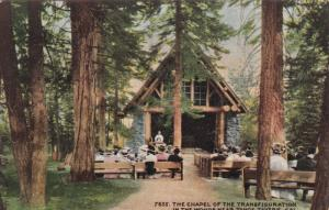 WOODS NEAR TAHOE TAVERN, California , 00-10s; The Chapel of the Transfiguration
