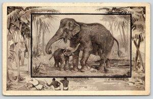 Great White Hunter~African Safari Serie~Elephant Mama~Baby~Jungle~1909 MJ Mintz