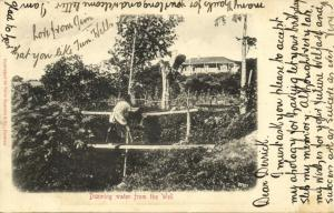 south africa, Drawing Water from the Well (1908) Sallo Epstein & Co. Postcard