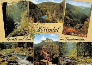 Hoellental im Frankenwald Waldsee Teufelsteg Hirschensprung Koenig David