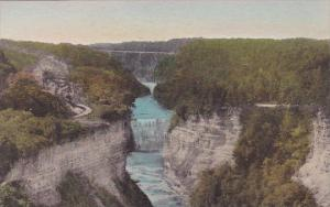 Middle Falls From Inspiration Point Letchworth State Park New York Handcolore...