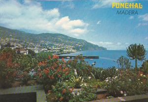 Portugal Madeira Funchal Sta Catarina's Park and City's Oriental View