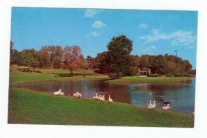 Freedom Park, Charlotte, North Carolina, 50-70s