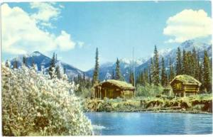 Trappers Cabin, a Typical Alaska Scene in the Fur Industry, Chrome