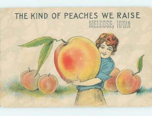 Divided-Back PEACH EXAGGERATION Melrose Iowa IA HM4671