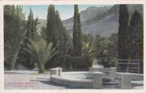 Botanical Gardens, Graaf Reinet, Cape Colony, South Africa, 1910-1920s