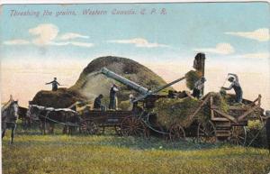 Western Canada Threshing The Grains 1910