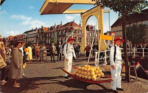 Alkmaar Holland Kaasmarkt Alkmaar Kaasmarkt