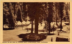 Conditioning Tent Camp Hammer Army Air Field Fresno California postcard