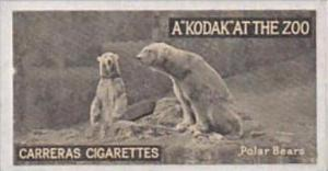 Carreras Cigarette Card Kodak At Zoo 1st Series No 37 Polar Bears