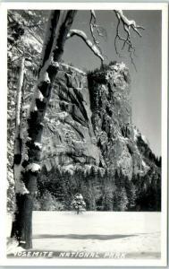 YOSEMITE NATIONAL PARK Real Photo RPPC Postcard Winter Scene c1950s Unused