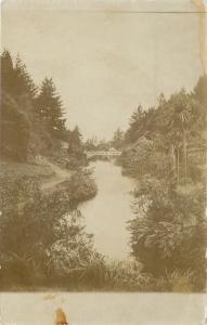 New Plymouth NZ Bridge~Rec Grounds~Waiwhakaiho River, Te Henui Stream~RPPC c1907
