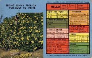 Seeing Sunny Florida Misc FL 1951