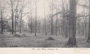 ALTOONA, Pennsylvania, 1900-1910's; Ant Hills