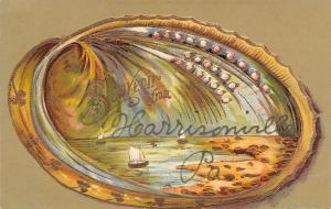Harrisonville Pennsylvania~Souvenir Clam Shell~Oyster Pearls~Gold Leaf Emb~1908