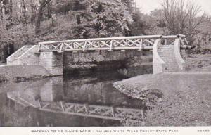 Illinois White Pines Forest State Park Rustic Bridge 1954