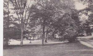 Maine Orono Campus View University Of Maine Albertype