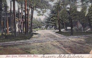 WHALOM PARK, Massachusetts, PU-1907; Main Grove