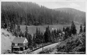 Kurort Wildemann im Harz Spiegeltal Wald Gesamtansicht