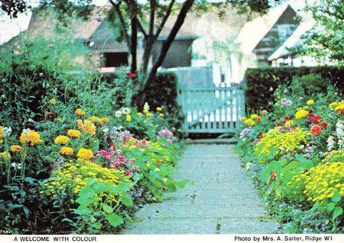 Colour Flower Garden Ridge Village Herts Hertfordshire Womens Institute Postcard