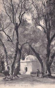 Blidah Algeria Antique Sacres Postcard