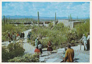 Porch Arizona Sonora Desert Museum Tucson Arizona