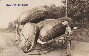 RP: Giant Watermellons in wagon , Nebraska Products , PU-1908
