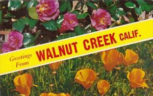 California Greetings From Walnut Creek