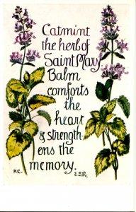 Herb Garden Series #615. Editor: Eleanore S. Rohde; Design by Hilda M Coley