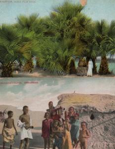 Khartum Sudan African Palm Trees Soudanese Children 2x Postcard s