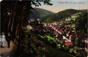 CPA AK Triberg- GERMANY (906191)